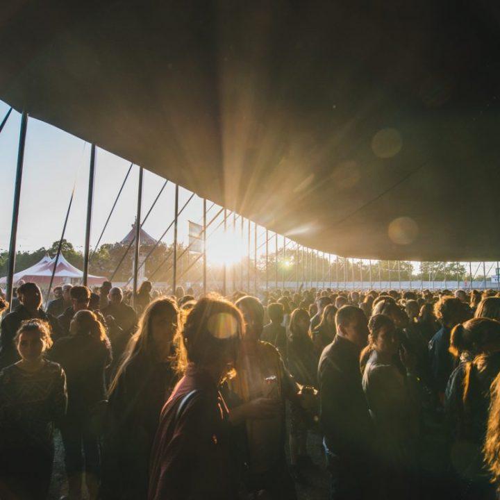 Field Day Festival